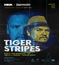 /media/extradisk/cdcf/wordpress/wp-content/uploads/2018/10/NOVA_005_Tiger_Stripes.jpg